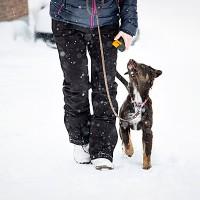 Train'N'Treat Dog Treat Dispenser
