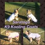 Saratogo Kool Coats